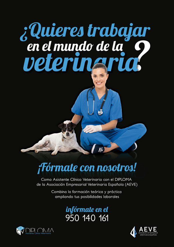 clínica veterinaria en sevilla